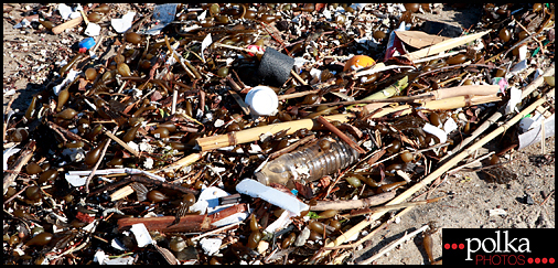 junk washed-up Dockweiler Beach Los Angeles