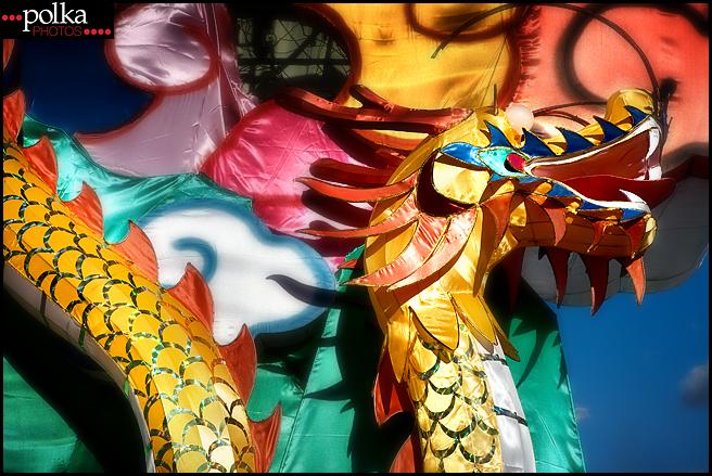 Chinese New Year, dragon