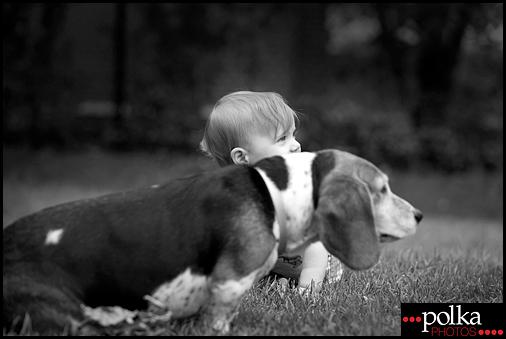 Los Angeles family portrait photographer, Los Angeles dog photographer