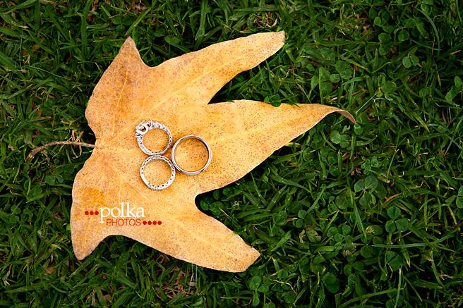 los angeles wedding photographer, fall wedding, autumn wedding, leaf, leaves, yellow, wedding rings, wedding bands, Griffith Park, Griffith Park wedding photographer